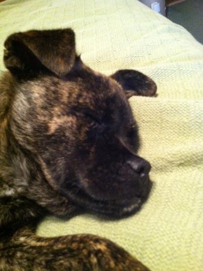 Emma Sleepin'